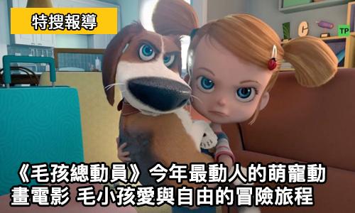 《 毛孩總動員 》今年最動人的萌寵動畫電影 毛小孩愛與自由的冒險旅程