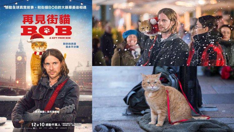 [快閃贈票] 年度最溫馨人貓情誼電影《再見街貓 BOB》也是 BOB 最後一次在大銀幕上的演出首圖
