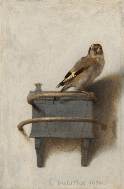 全書的另一個主角,名畫《金翅雀》