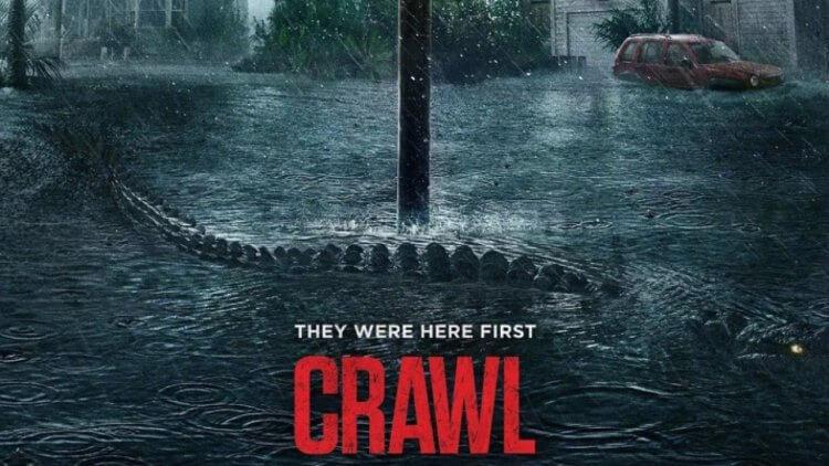 在《鱷魔》之前:那些縱橫恐怖電影的鱷魚們 (三):《黑水》《大鱷魔》《一池到底》首圖