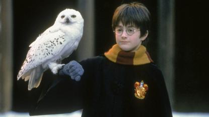 電影《哈利波特:神秘的魔法石》劇照。
