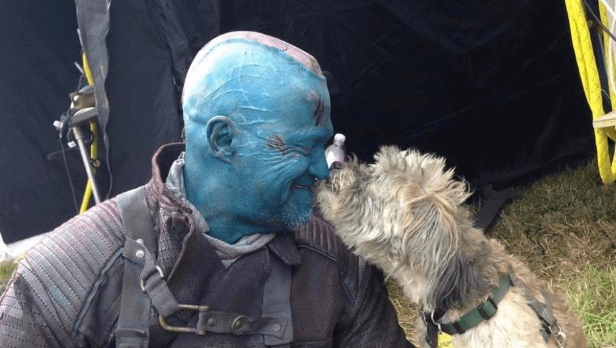 《星際異攻隊》麥克魯克和導演詹姆斯岡恩的愛犬。