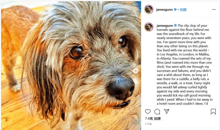 《自殺突擊隊 2》導演詹姆斯岡恩告別他的愛犬。