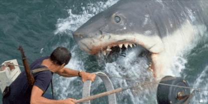 《大白鯊》劇照。