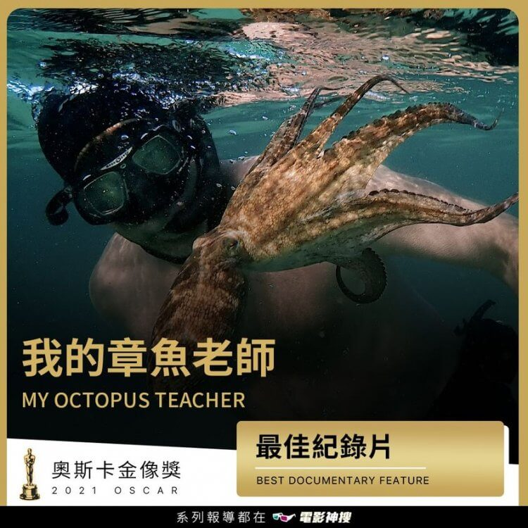 恭喜 《#我的章魚老師》 獲得 2021 年第 93 屆奧斯卡金像獎「最佳紀錄片」獎!