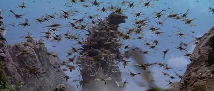 美加基拉斯的設定是《哥吉拉×美加基拉斯 G 消滅作戰》的亮點,不僅完整了過去哥吉拉系列出現的怪物,也帶來以往哥吉拉系列出現過的昆蟲怪物所沒有的異樣感。