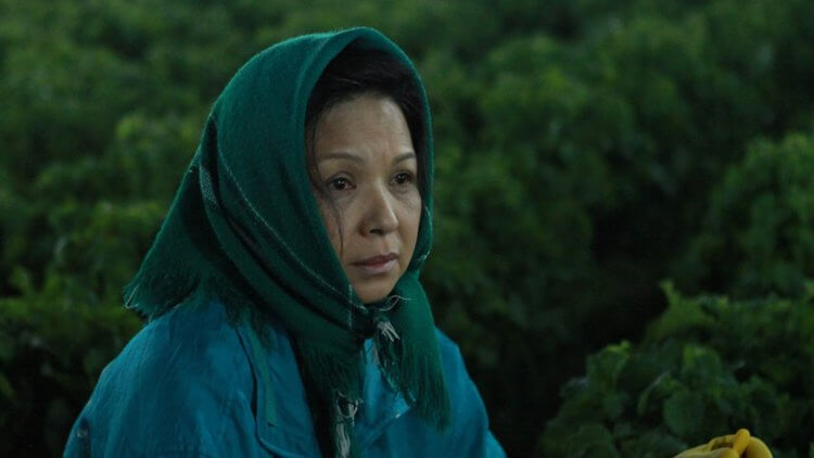 蕃薯澆米-由台灣兩大影后-歸亞蕾-以及-楊貴媚-共同主演。