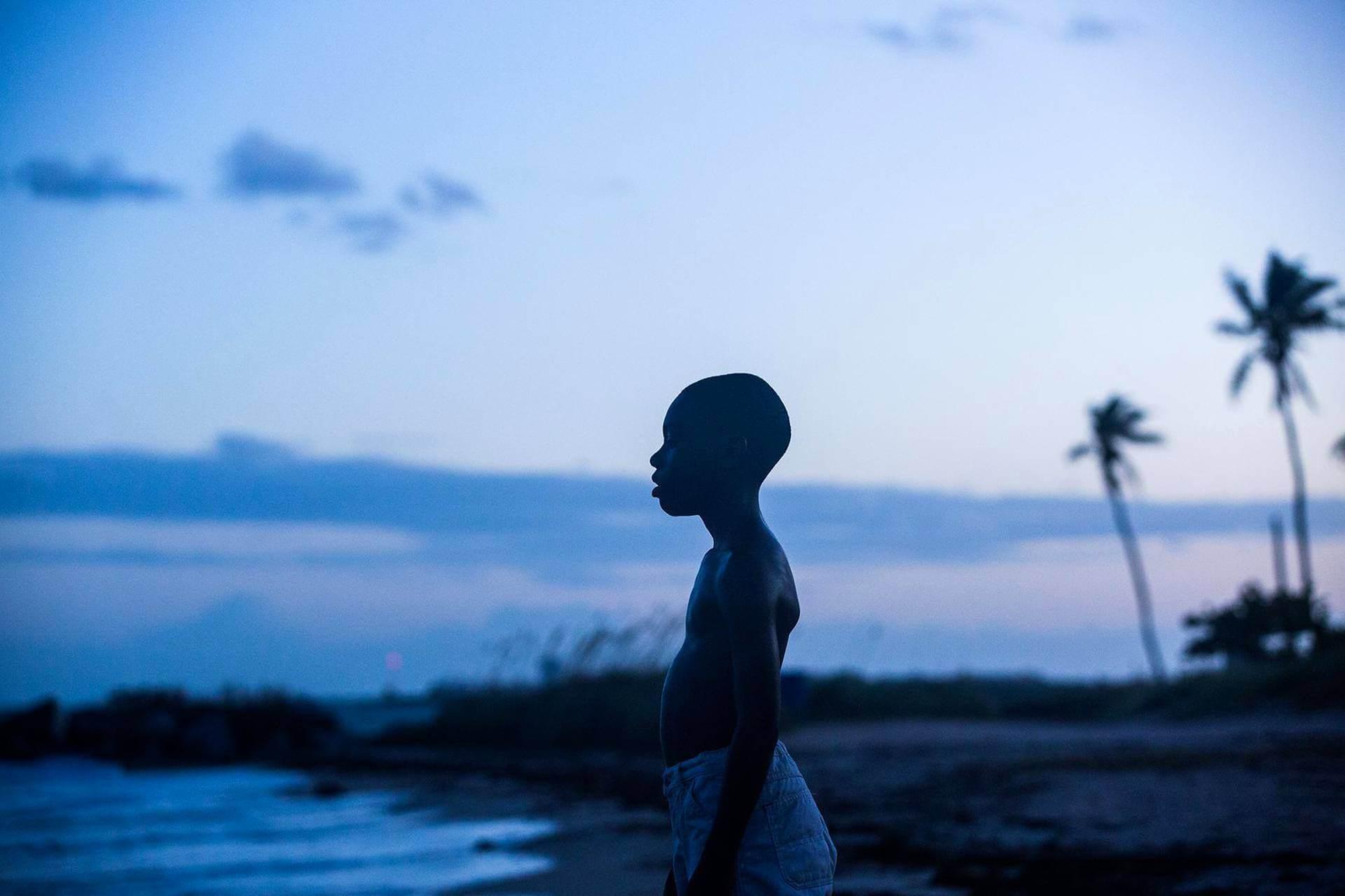 巴瑞賈金斯執導電影《月光下的藍色男孩》。