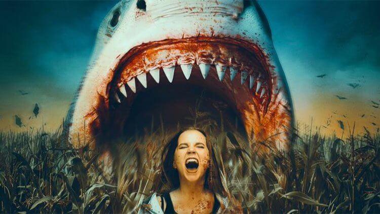 沒有鯊魚到不了的地方!B 級片《玉米田中的鯊魚》預告釋出:邪教組織計劃佔領世界,守護者是玉米田裡的大鯊魚!首圖