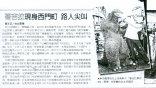 【專題】「後平成」哥吉拉在台灣(二): 怪獸網路崛起、短暫回歸院線