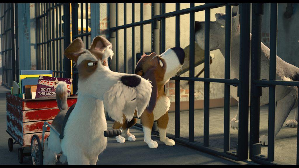 毛孩總動員 各種品種的 狗狗 都有故事