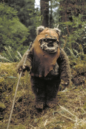 不只主角,《 星際大戰 》故事中也有許多描述成功的配角,像是 伊娃族 。