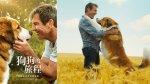 [快閃贈票]  《狗狗的旅程》特映會資格抽獎(已結束)