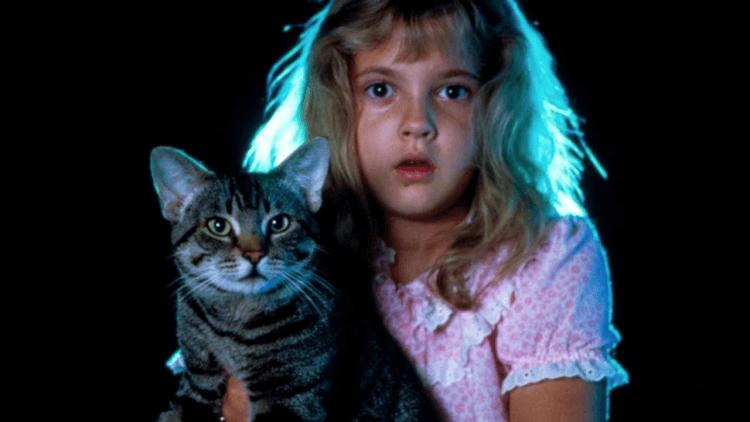 慶祝國際貓日,你應該重溫這些電影裡的貓貓魔力,牠們如何讓電影變得更有趣首圖
