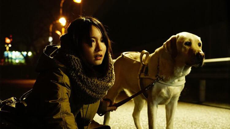 【影評】改編不輸韓版的《看不見的目擊者》:不只血腥驚悚,內容更深刻札實首圖