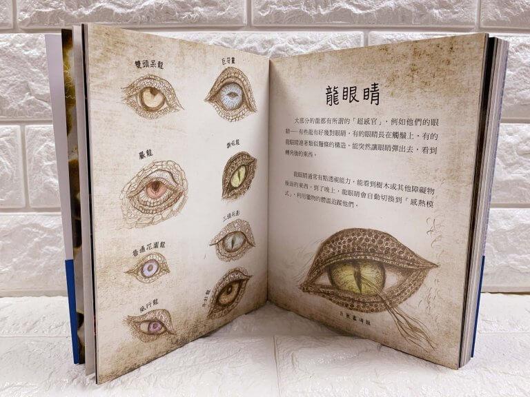 《馴龍高手:「不」完整龍族百科》全彩設定畫集內頁展示。