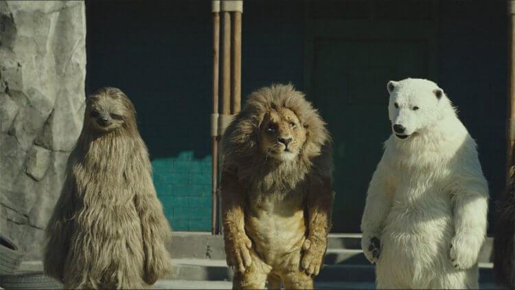 """【影評】《超""""人""""氣動物園》:假白熊喝可樂比你想像中還搞笑,但你看不到白熊裝裡那個人在哭首圖"""