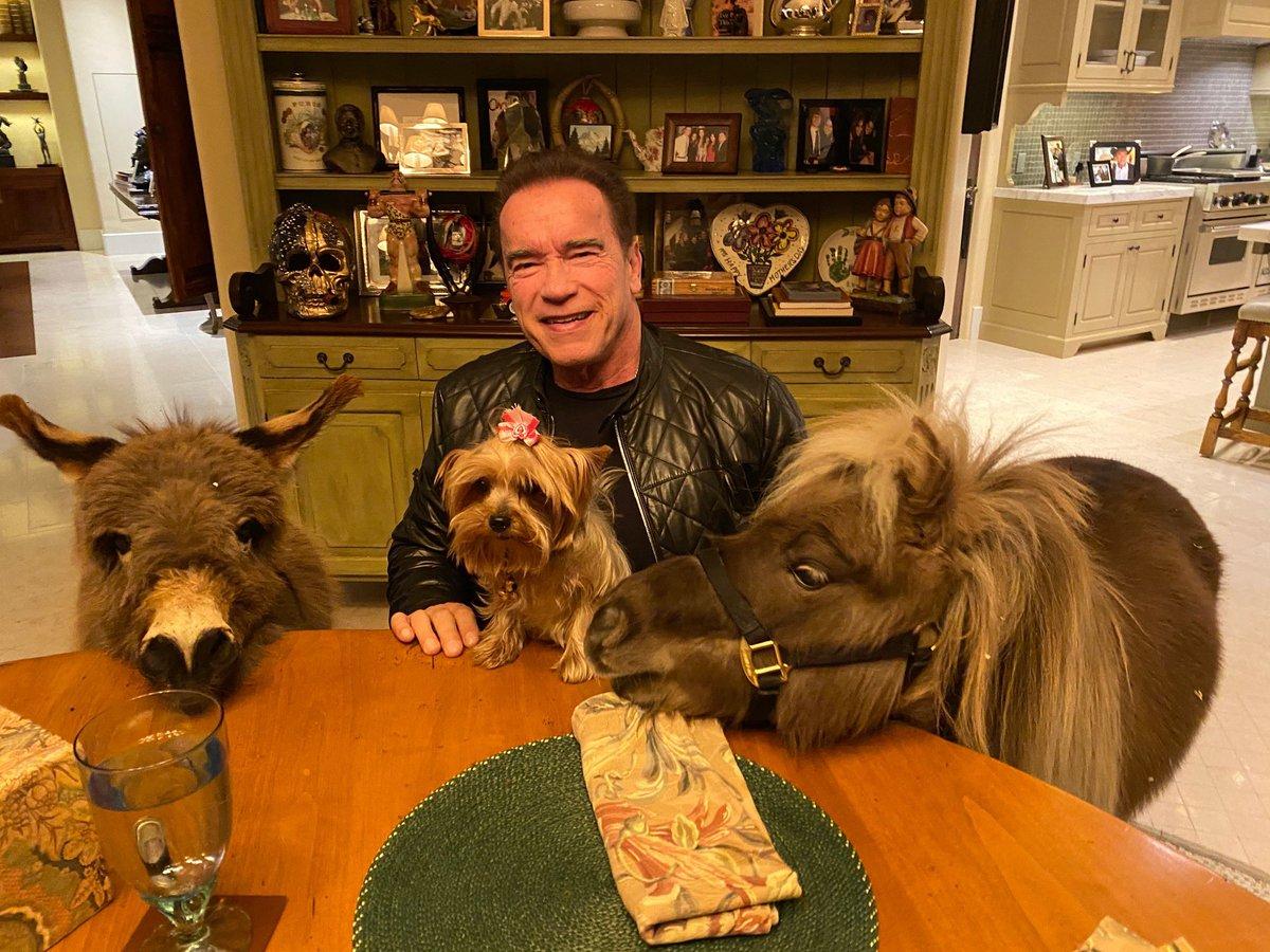 阿諾史瓦辛格與他的寵物們。