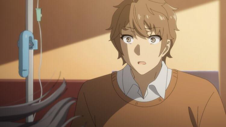劇場版動畫《青春豬頭少年不會夢到懷夢美少女》中的主角梓川咲太。