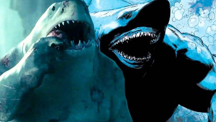 要不要 Num Num?《自殺突擊隊:集結》中的呆萌擔當「鯊魚王」原作設定介紹——首圖