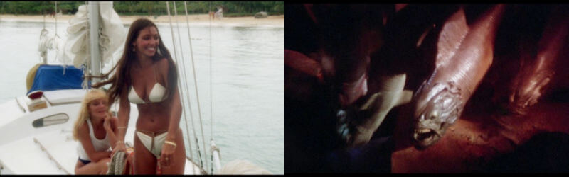 《 食人魚2 》 劇照 。