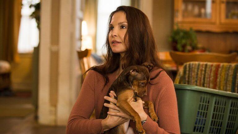 好萊塢女星艾希莉賈德全靠「他」陪伴度過 metoo 陰影低潮