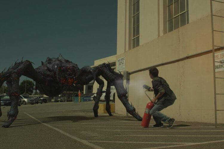 《熔岩毒蛛》劇照。