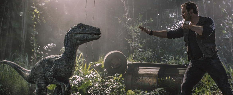 《 侏羅紀世界 : 殞落國度》中,伊萊米爾斯意圖結合 小藍 (圖左) 以及 帝王暴龍 的 DNA ,創造更具殺傷力的「 帝王 迅猛龍 」作為戰爭機器。