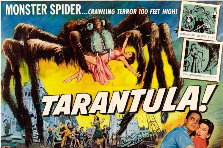 首部以蜘蛛為巨大怪獸的電影《狼蛛》。