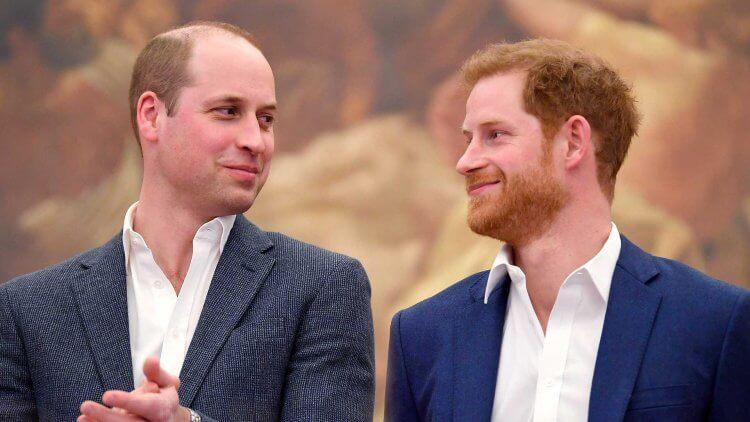 威廉王子和哈利王子。
