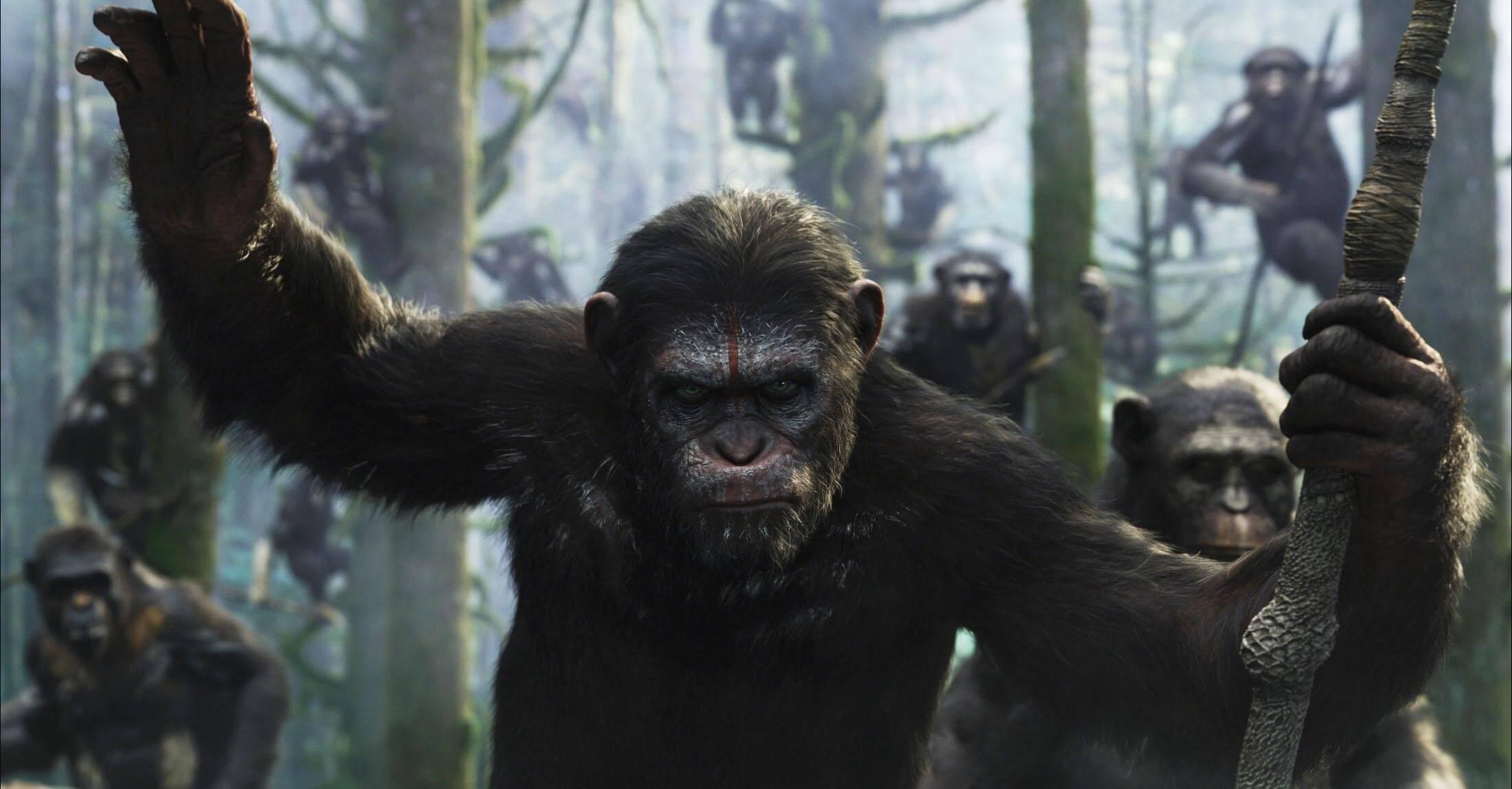 《 猩球崛起 》當中也有類似的議題讓觀眾反思。