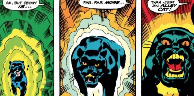 阿加莎的寵物黑貓 Ebony。