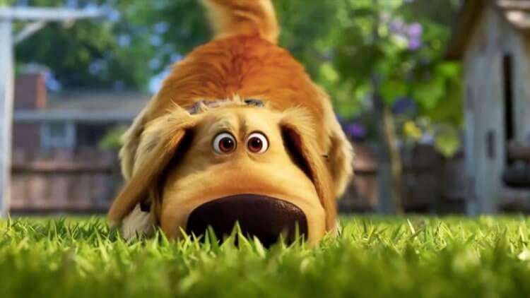 慶祝國際狗狗日!《天外奇蹟》外傳動畫系列《Dug Days》釋出全新預告,聚焦「小逗」的後院生活趣事首圖