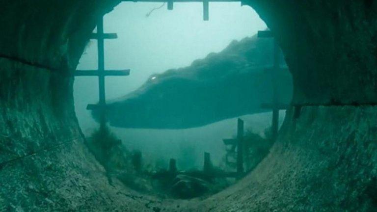 在《鱷魔》之前,縱橫恐怖電影的那些鱷魚們 (一):《鱷魚人》《活人生吞》《巨鱷之河》
