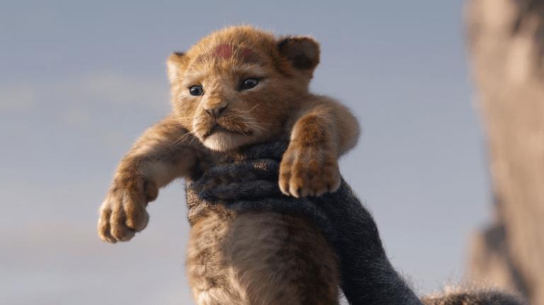 《獅子王》(The Lion King) 中的小小辛巴,運用先進特效的「真獅版」電影即將上映。