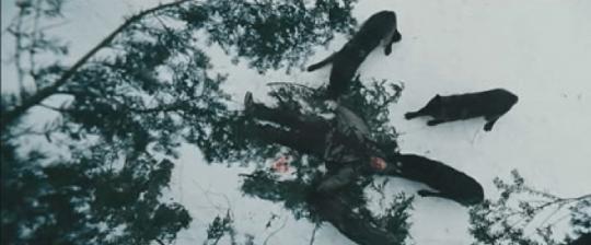 2012 年喬卡納漢執導的災難動作片《即刻獵殺》中,人狼搏鬥的片段因動保人士「建言」而有所刪減。