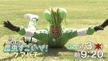 【人物特寫】香川照之:半澤直樹的反派大和田常務的另一面,竟是狂熱的昆蟲專家「螳螂先生」?