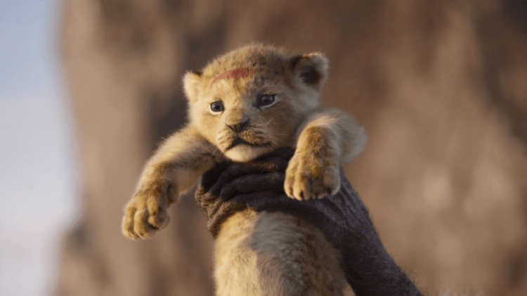 2019版本的 《獅子王》劇照