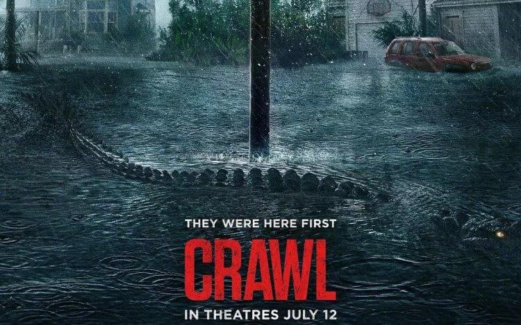 亞歷山大阿甲執導的恐怖電影《鱷魔》票房表現不錯,推出續集的可能性大增。