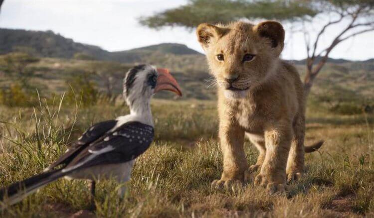 《獅子王》票房表現依舊穩定。