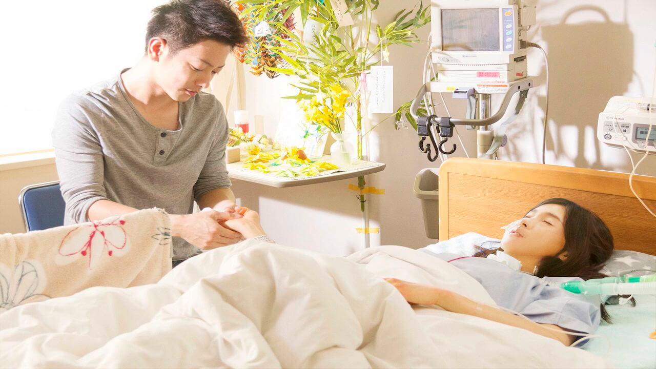【影評】《跨越8年的新娘》佐藤健&土屋太鳳 不離不棄構築愛的可能