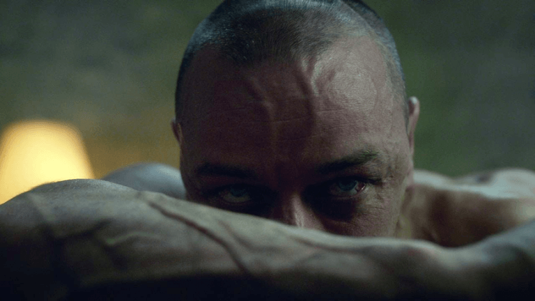 詹姆斯麥艾維在奈沙馬蘭 2017 年執導電影《分裂》中飾演擁有 24 個分裂人格的主角「凱文」。