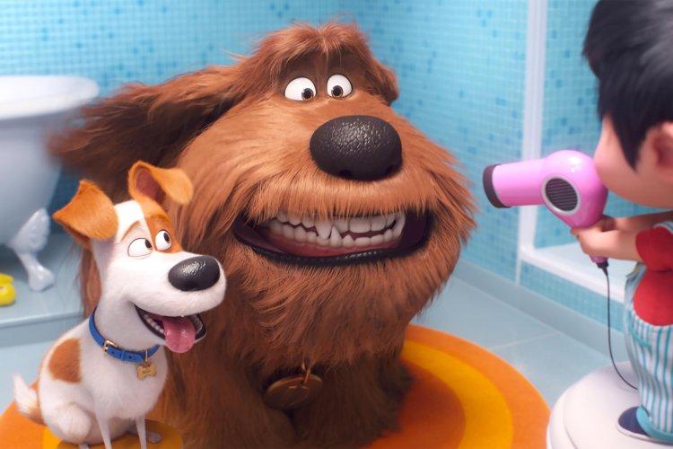 【影評】療癒首選!《寵物當家2》麥斯回歸 上演英雄出征熱血之旅首圖