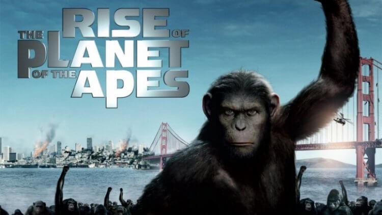 《猩球崛起》(Rise of the Planet of the Apes) 劇照。