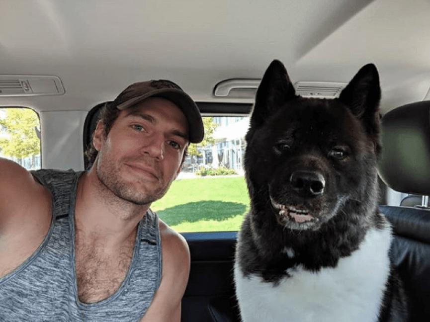 亨利卡維爾與他的狗