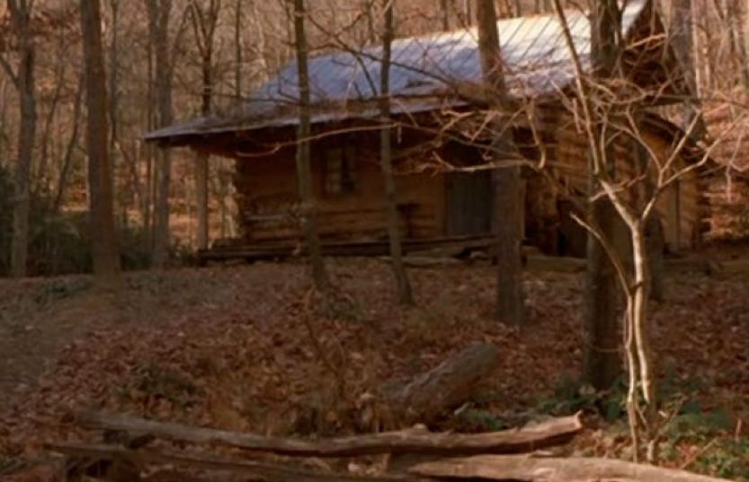 恐怖電影 《 血肉森林 》 劇照 。