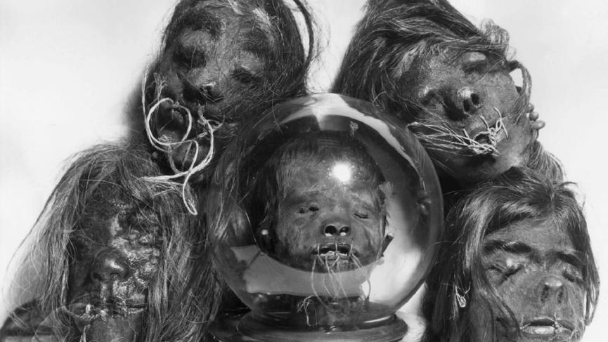 凱吉 神祕收藏系列 : 古時用以炫耀戰功的乾縮人頭。