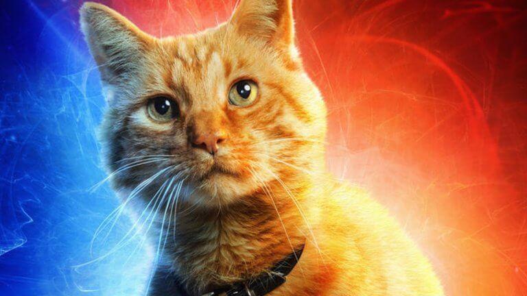 羅素導演親自回答 《復仇者聯盟:終局之戰》與哪幾部MCU電影連結最深?「橘貓」呆頭鵝有逃過彈指毀滅嗎??