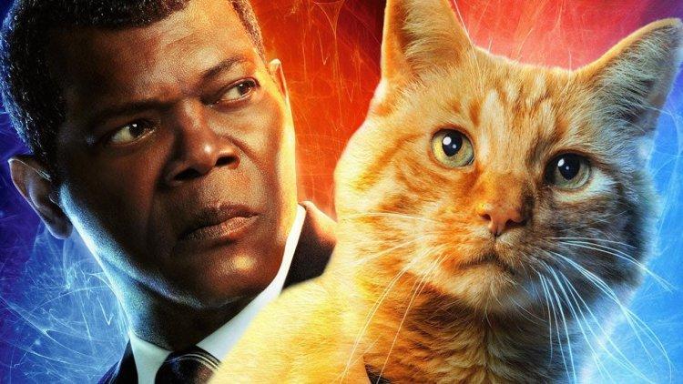 日防夜防,橘貓難防!關於尼克福瑞失去的左眼,《驚奇隊長》導演表示:「一切是計畫好的!」首圖
