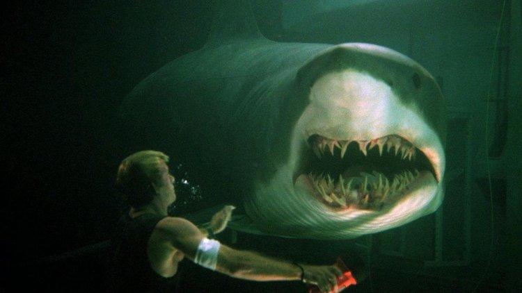 鯊魚災難片《水深火熱》你看過嗎?《水深火熱3》將推出,聰明鯊魚再回歸首圖